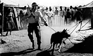 South Africa /Police op.in Soweto 1986.