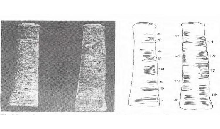ishango-bone-banner
